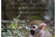 zoodecin_vylet